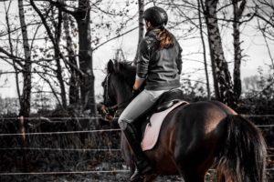 Der TRABER rennt, der Reiter klemmt – oder andersrum? Teil 1