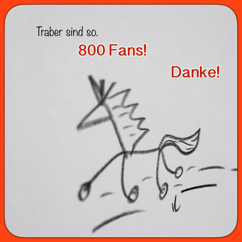 800 Facebook-Fans!