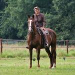 traber-ausbilden_entspannter-umgang-mit-pferd_pferdeausbildung-tipps