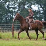 traber-ausbildung_pferdeausbildung_töltende-traber_entspannt-reiten