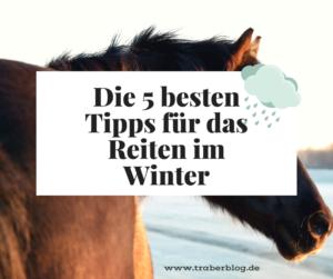 Traber-Frost: 5 Tipps für das Reiten im Winter
