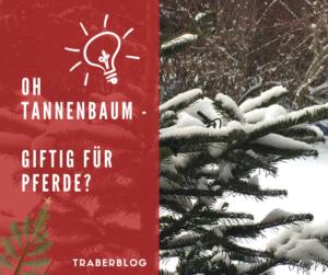 Oh Tannenbaum, Gift am Christbaum?
