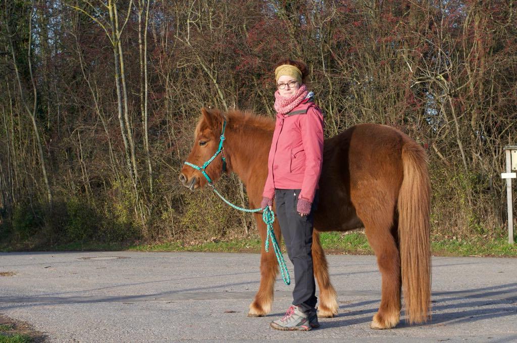 Serie: Entspannter Umgang mit dem Pferd – Tipps von Christina Schuhmann