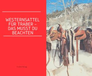 Westernsattel für Traber – das musst du beachten [Werbung]