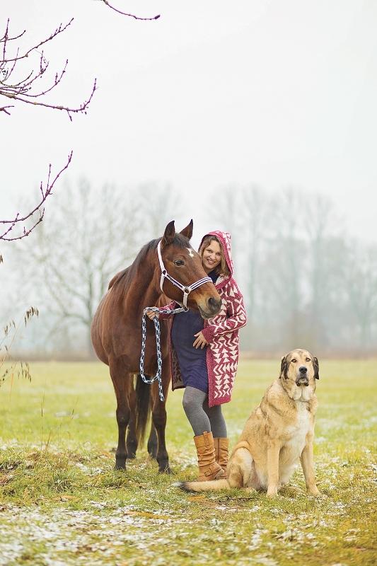 traber_pferdeblog_pferde-und-hunde