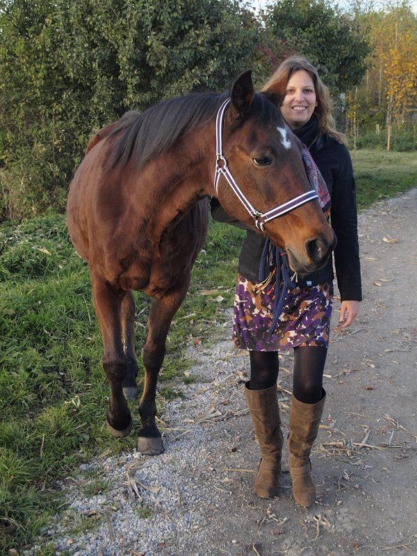 traber-reiten_pferdeblog