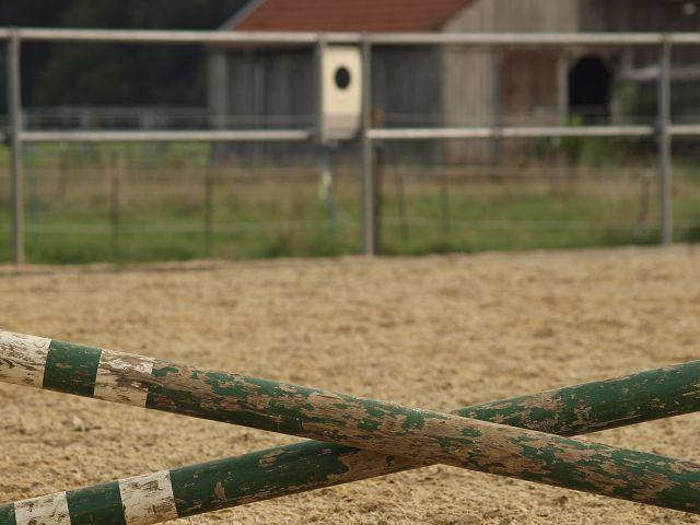 Die 10 besten Produkte für mehr Sicherheit im Pferdestall