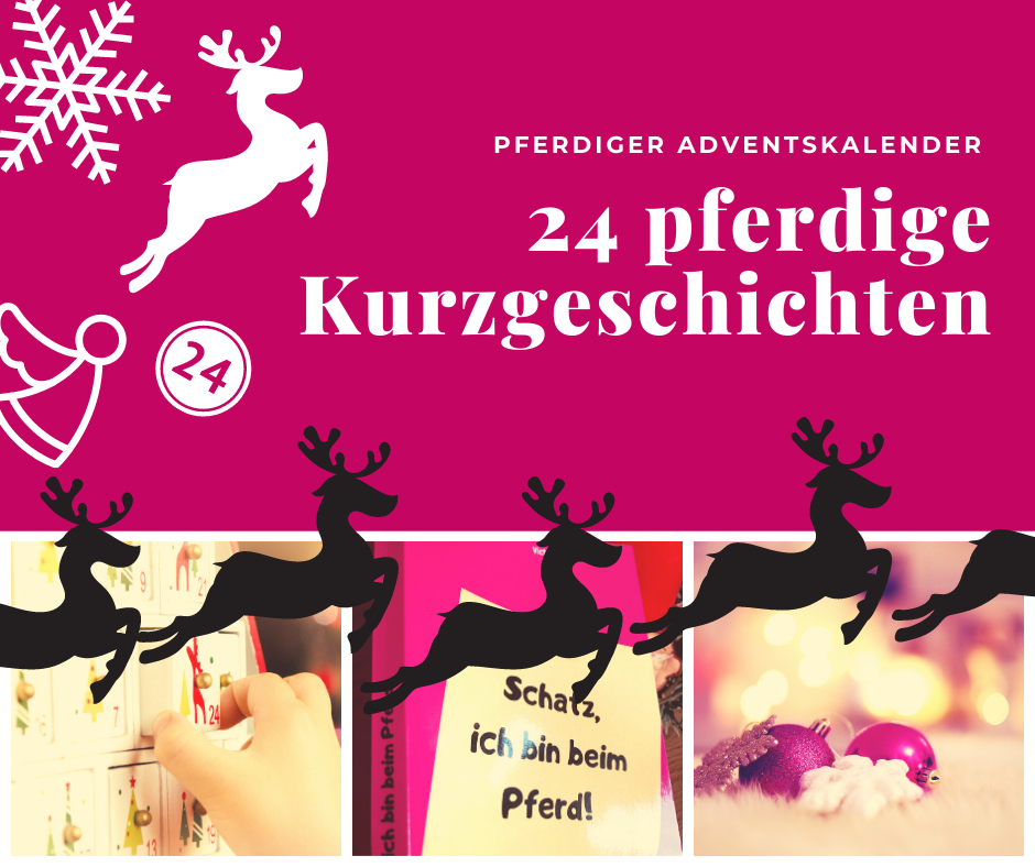 24 pferdige Kurzgeschichten zum Lachen – Traberblogs Countdown bis Weihnachten