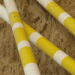stangenarbeit-pferde_traber-balance-tipps